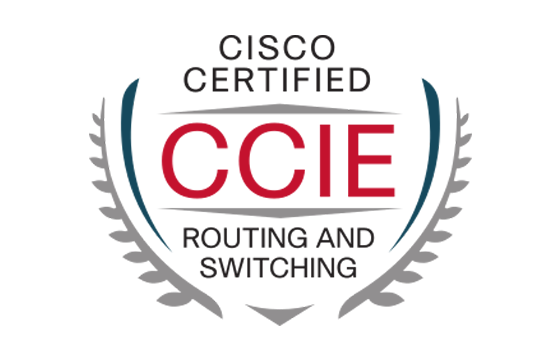 CCIE Certification questions and answers